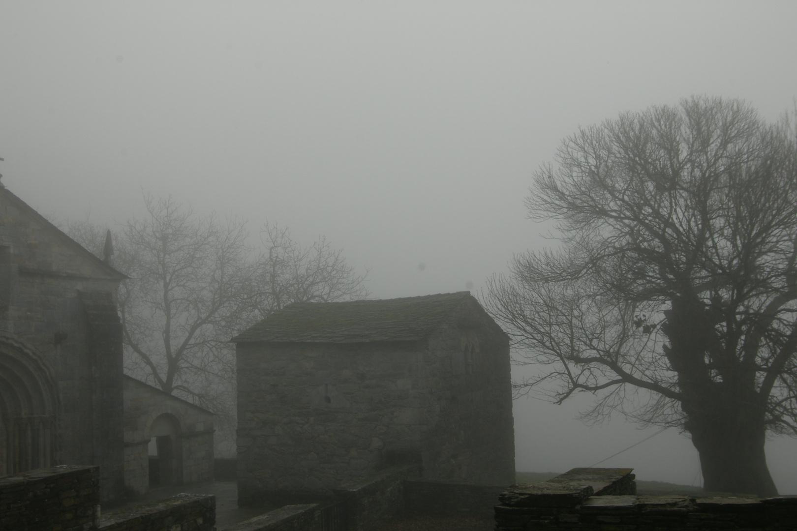 niebla 005