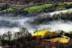 Niebla. Asturias.
