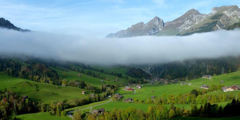 Niebla / Brouillard / Nebel...02