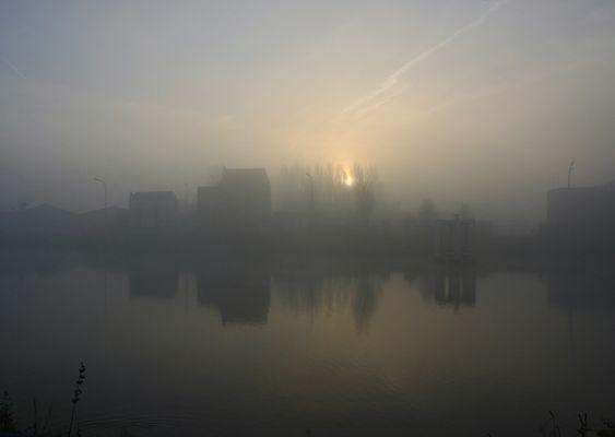 niebla de la mañana