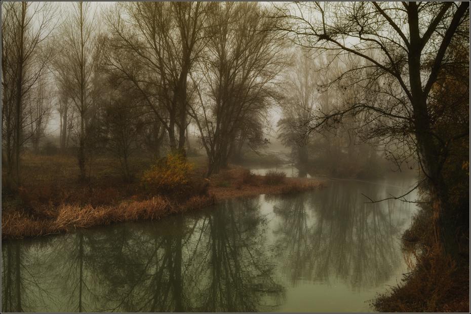 Niebla en el rio
