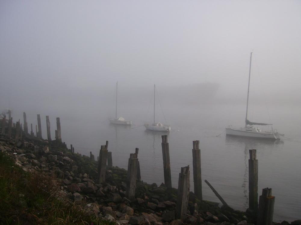 niebla en el rio quequen,necochea argentina