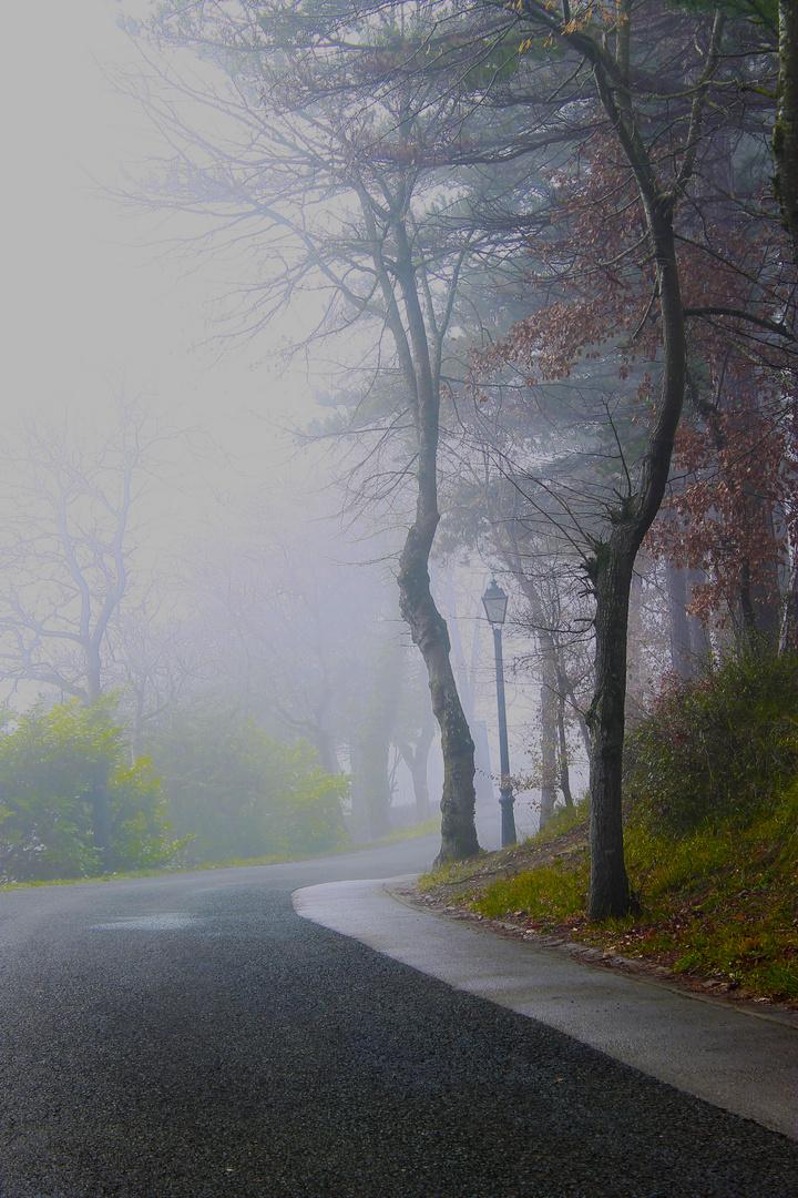 Niebla en Estíbaliz2