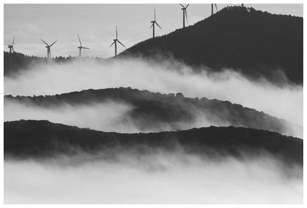 Niebla entre montañas