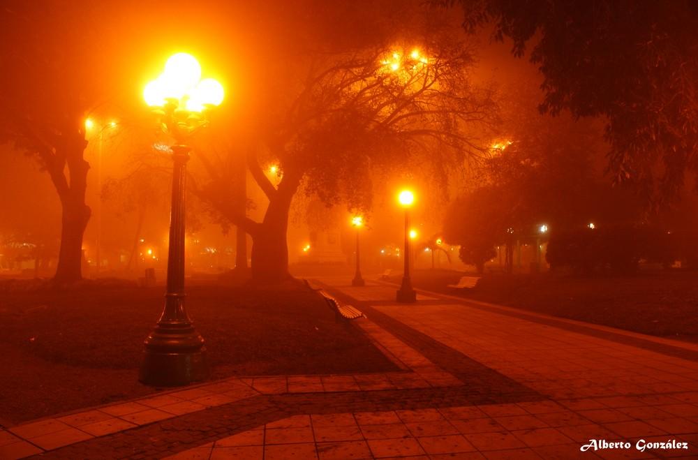 Niebla sobre mi plaza