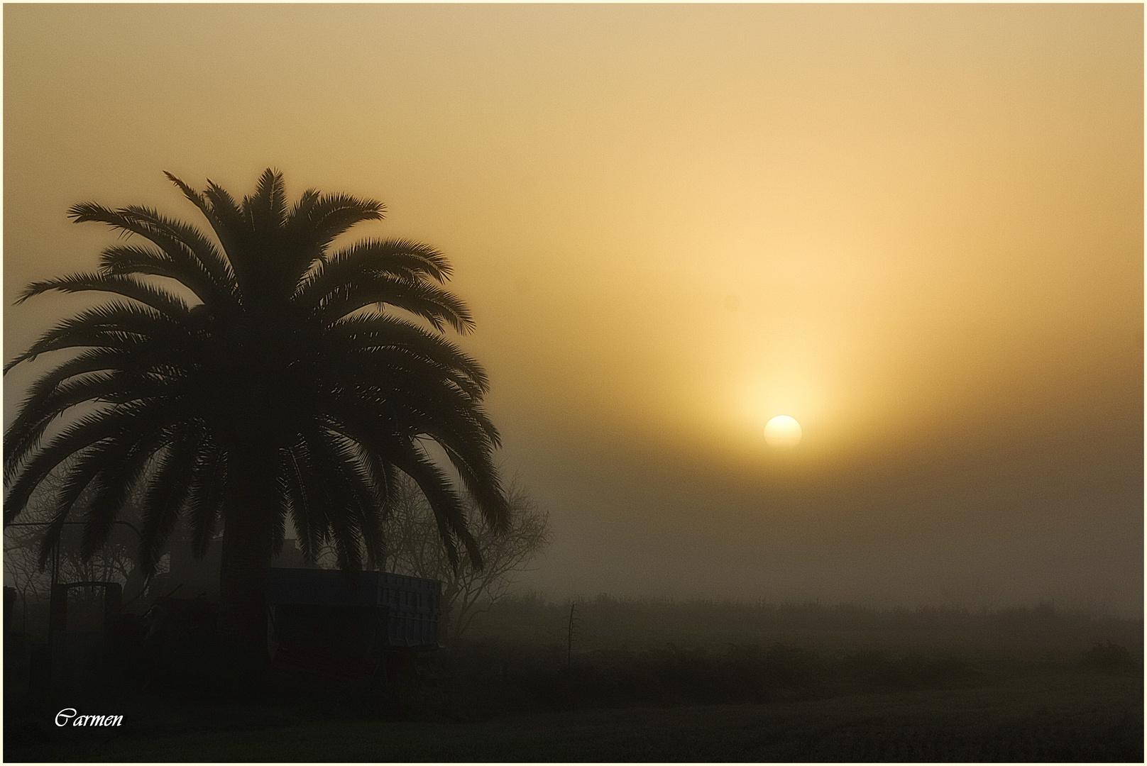 Nieblas matinales (DEDICADA A RAMÓN GAMELL)