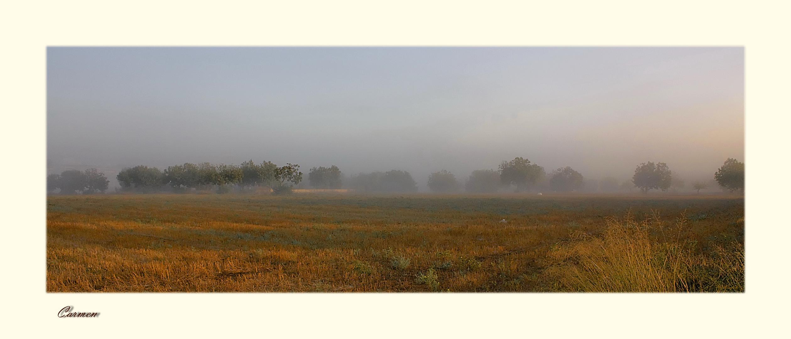 Nieblas matinales (DEDICADA A ROSA CALVETE)
