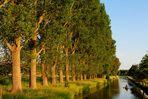 Niederrhein - Flusslandschaft im Abendlicht