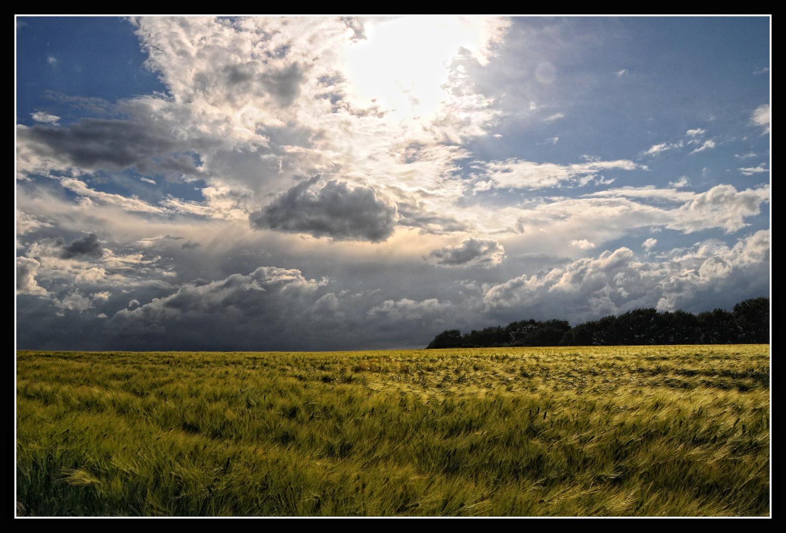 Niederrhein-Impressionen