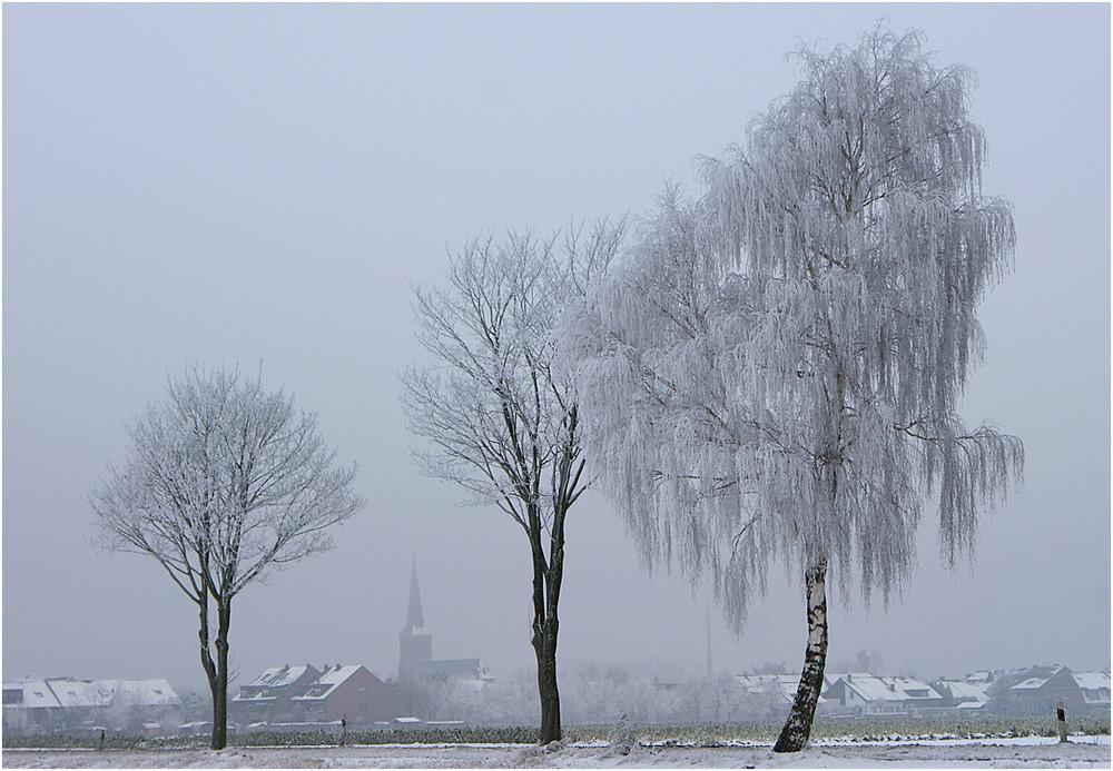Niederrhein-Winter 08/09