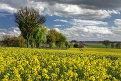 Niedersächsische Agrarlandschaft