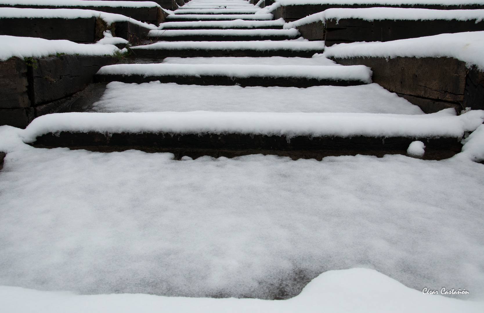 Nieve y madera