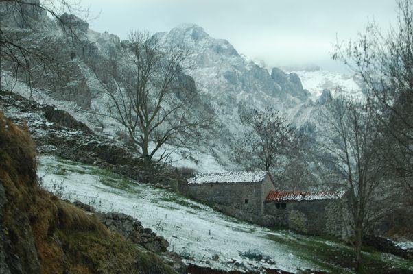 Nieve y silencio