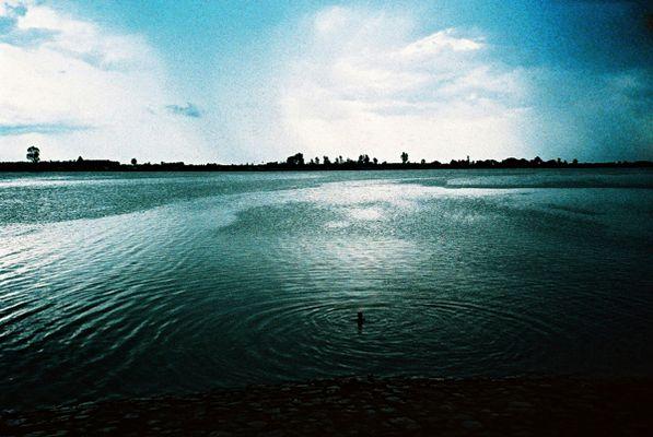 Niger bleu