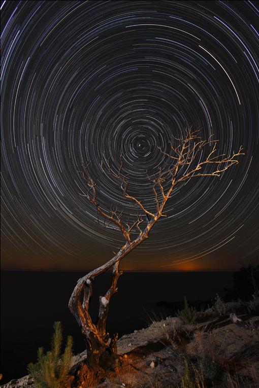 Night-Mare