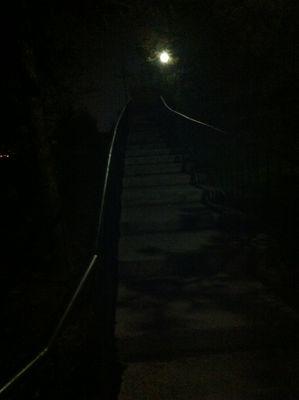 night walk...1