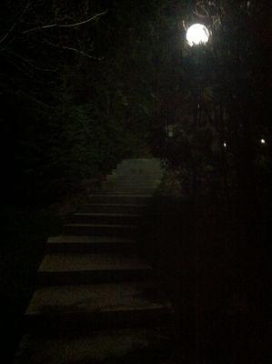 night walk...2