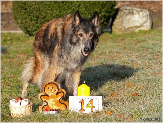 Nikis 14. Geburtstag