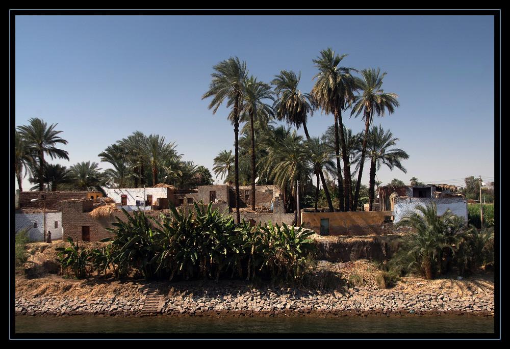 Nilufer bei Assuan