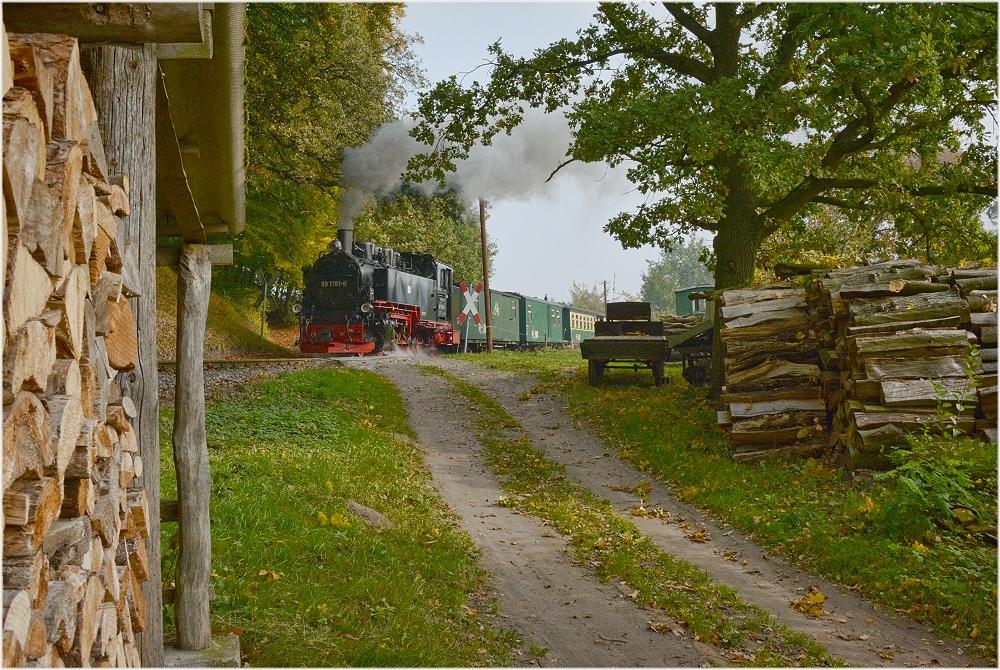 Nistelitz mit Holz vor der Hütten