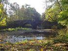 Nisterbrücke im Herbst