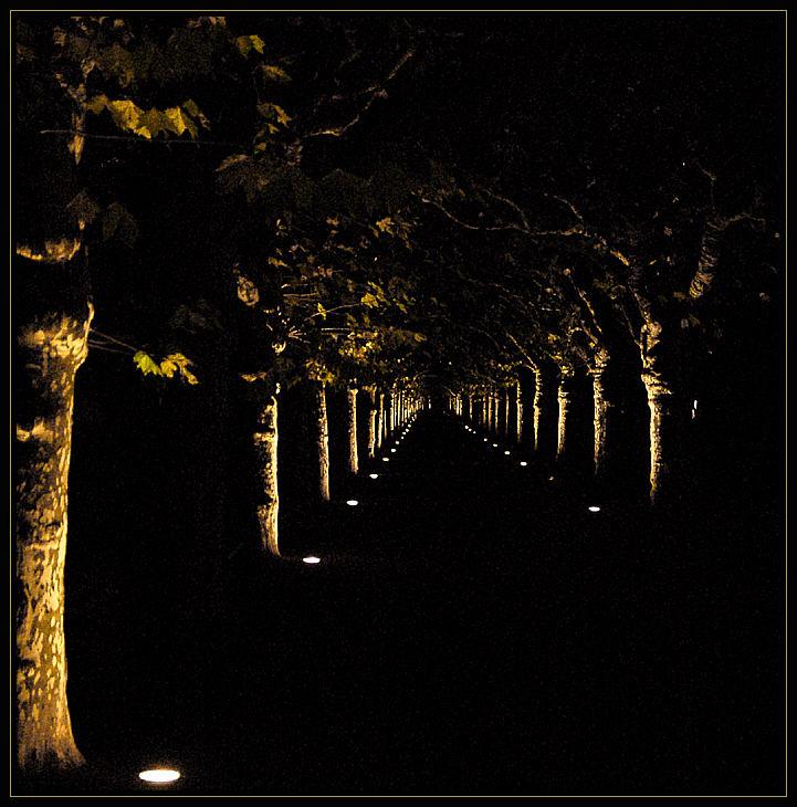 Nizzaanlage bei Nacht