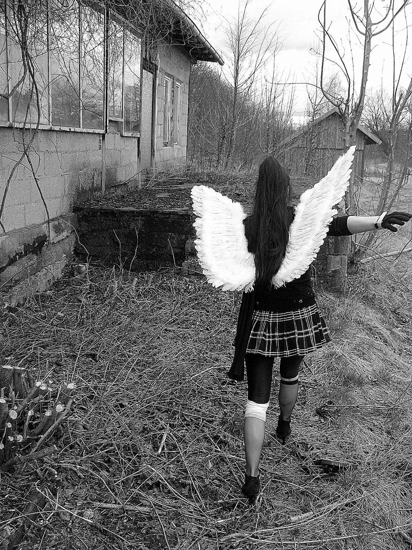 """No fallen Angel"" will do the job alone"