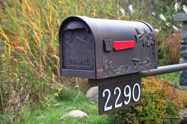 No mail today