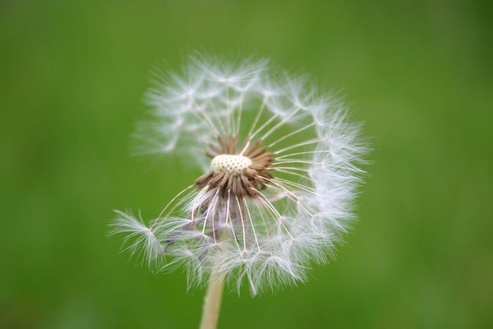 noch ein bisschen Wind und alles ist vorbei .....