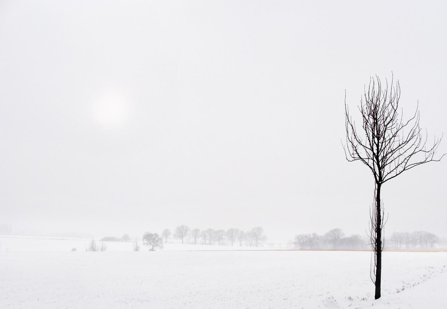 Noch ein bisschen Winter