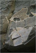 noch ein Gesicht im Fels ...