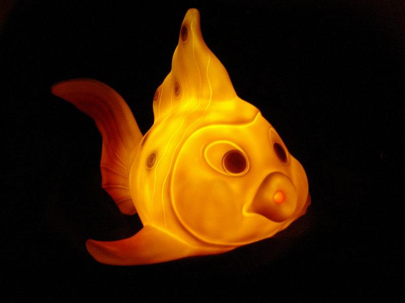 noch ein Kugelfisch