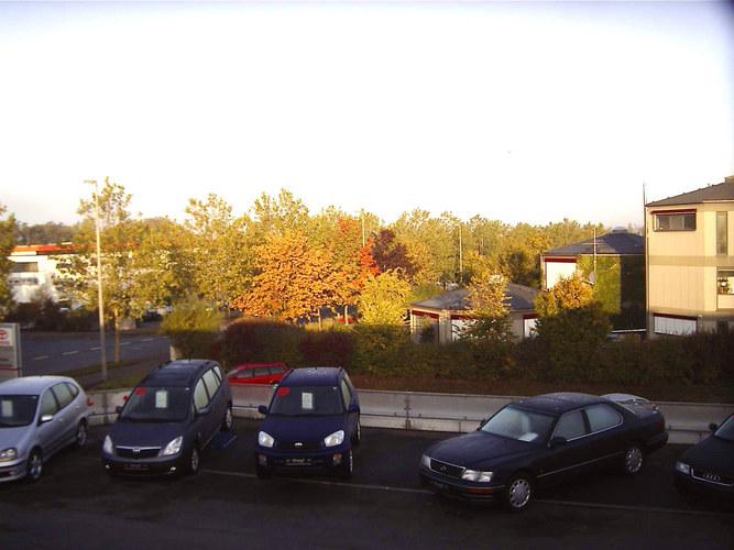 Noch ein Stück Herbst!