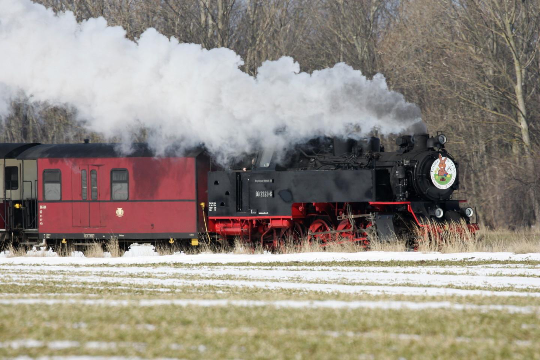 noch einmal der Molli 99 2323 hinter Kühlungsborn