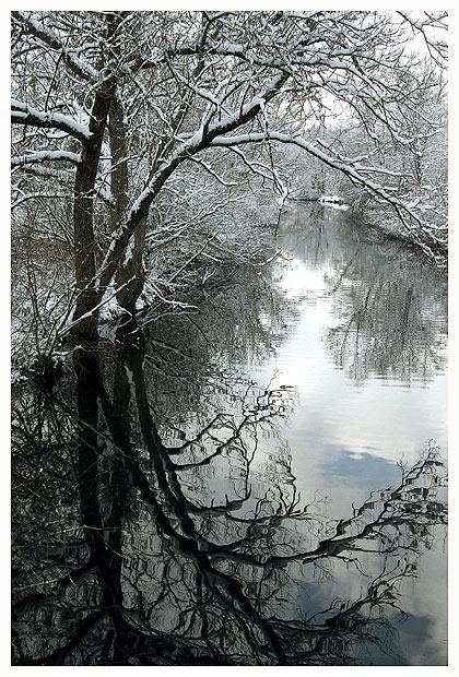 noch etwas winterliches, vielleicht...?