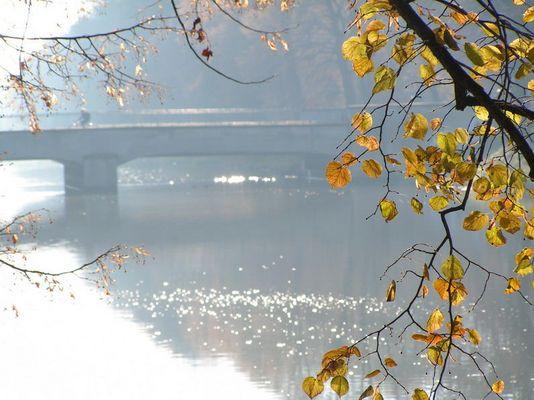 noch ist Herbst... !