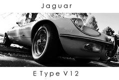 Noch mal der E Type V 12