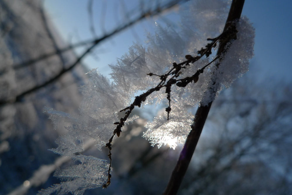 .... noch mal Winter in Sachsen!