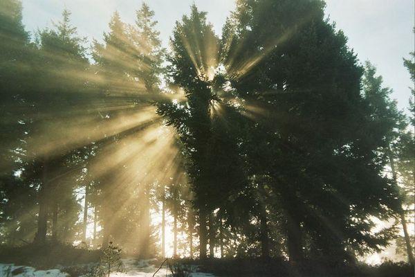 noch mehr Sonnenstrahlen
