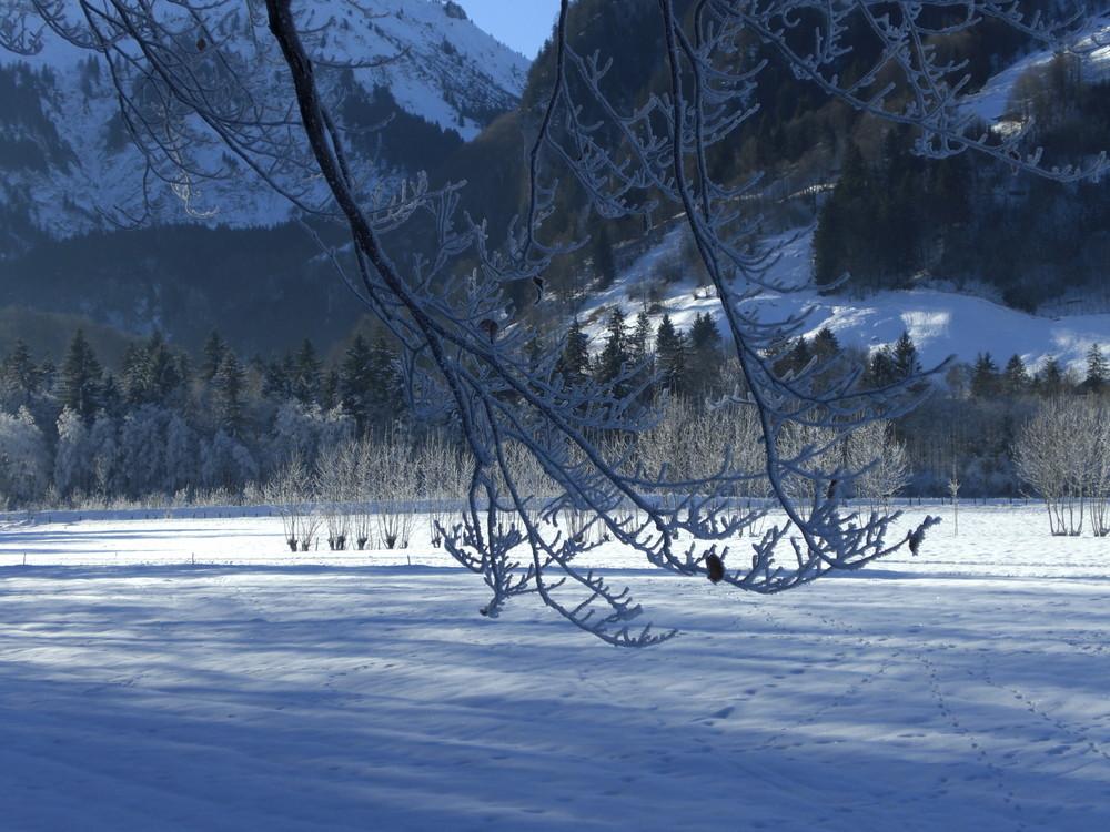 Noch mehr Winterzauber