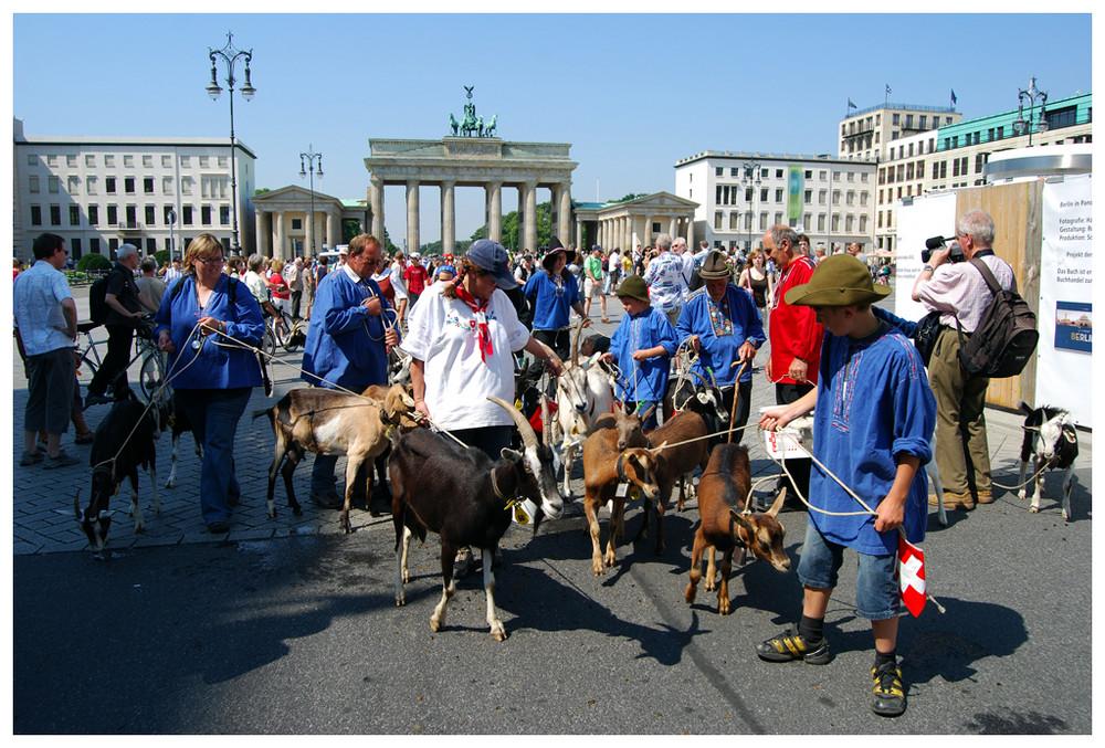... noch mehr Ziegen am Brandenburger Tor