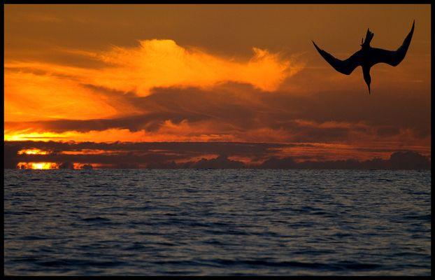 noch´ n Sonnenuntergang...