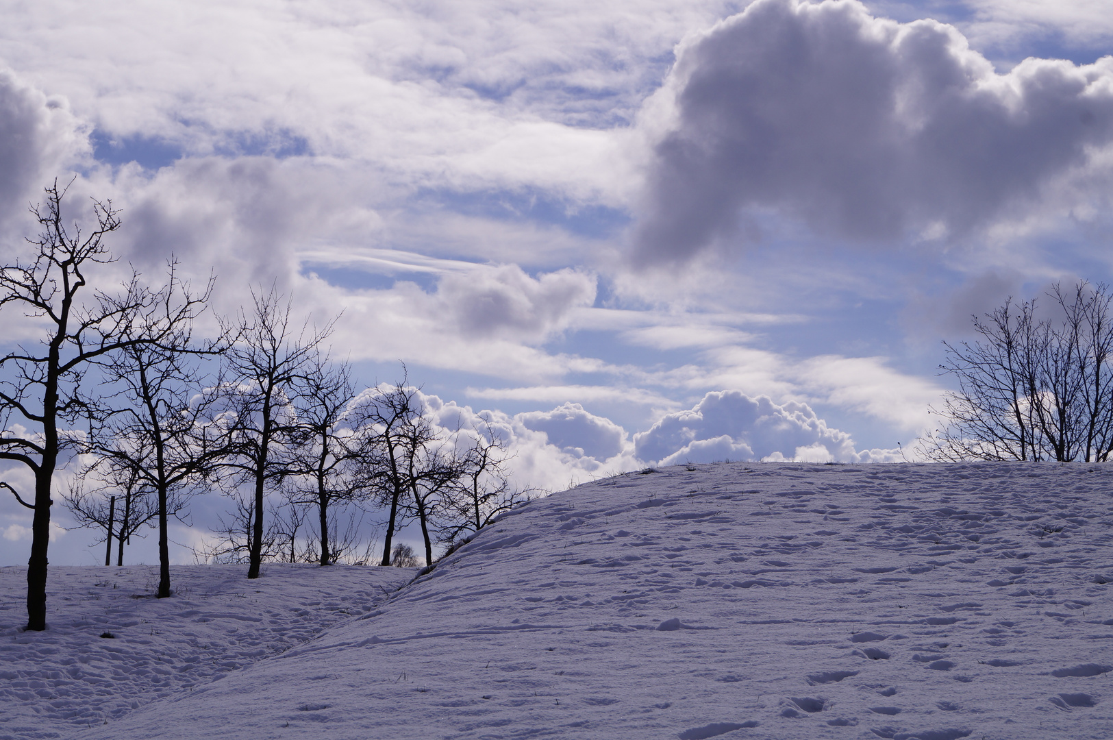 (noch) Winter