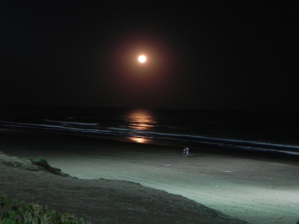 noche de luna