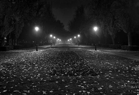 Noches de El Retiro - I I