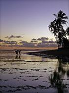 ...nochmal die Palmenecke