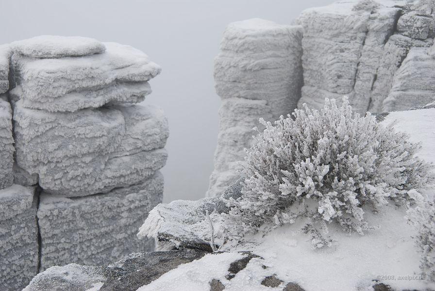 nochmal die winterliche Umgebung von Tisa
