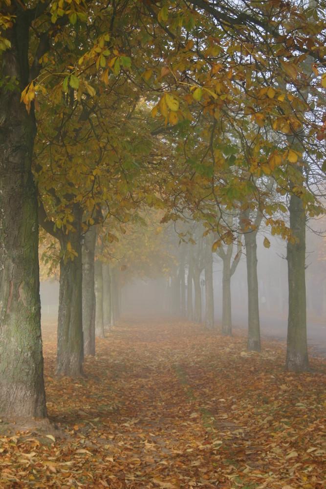 Nochmal Herbst