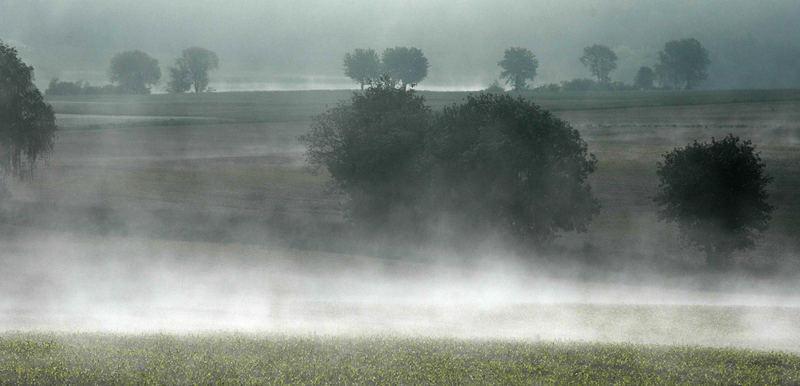 Nochmal Nebel