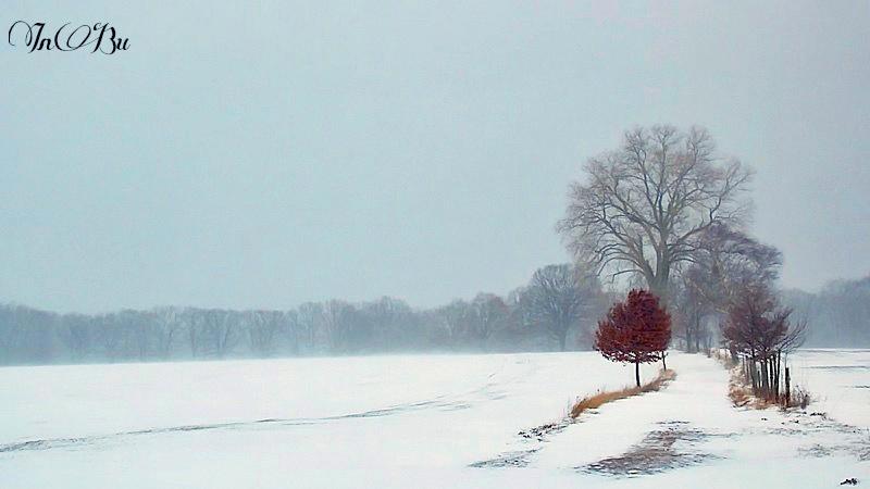 nochmal Winter